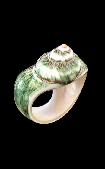 Christian Graciel/Green big shell ring